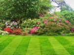 Commercial Lawncare in Chorley