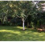 Tree Pruning in Wigan
