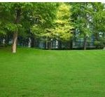 Lawncare Service in Preston