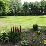 Lawn Maintenance in Preston