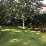 Lawn Company in Chorley