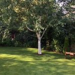 Lawncare Service in St Helens
