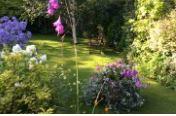 The-Best-Garden-Maintenance-In-Chorley