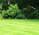 lawn services in Formby